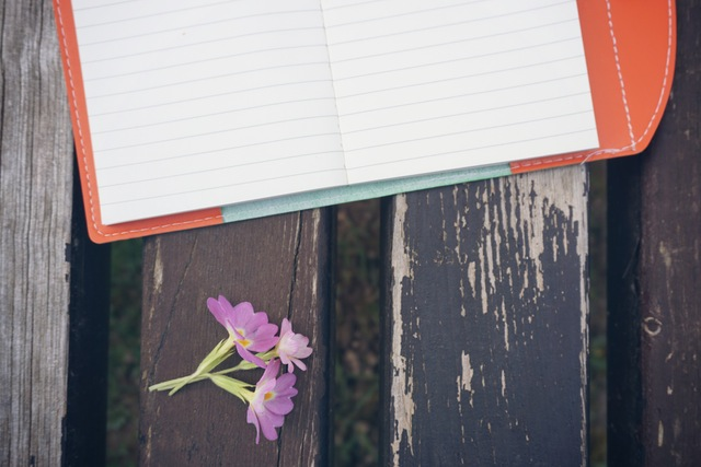 bench-flower-notebook-pen-163068